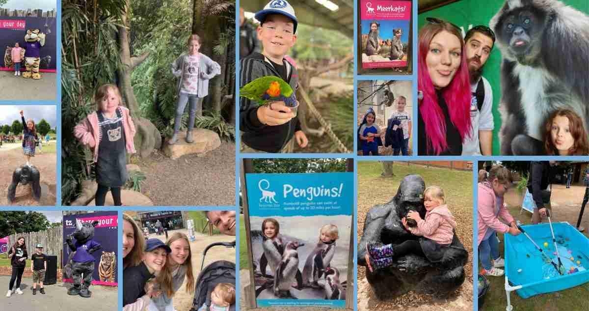 Post-treatment families go wild at Twycross Zoo